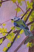 On A Branch Paintings - Blue Bird by Christy Brammer