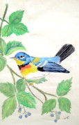 Black Berries Mixed Media Posters - Blue Bird Of Happiness Poster by Nancy Rucker