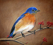 Winds Pastels - Blue Bird by Parivel Murugesan