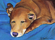 Domestic Dogs Painting Prints - Blue Blanket Print by Pat Saunders-White            