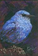 Bluebird Pastels Framed Prints - Blue Bluebird Framed Print by Grace Goodson