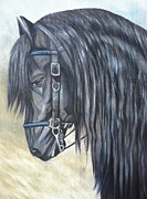 Black Horse Pastels Prints - Blue Bridle Print by Stephanie L Carr