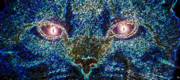 Cat Eyes Digital Art - Blue Cat by David Lee Thompson