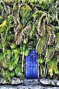 Fla Photos - Blue Door  by Dennis Sullivan