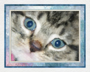 Pets Art Digital Art - Blue Eyed Kitten by Harry Hunsberger