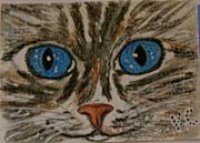 Kathy Marrs Chandler Art - Blue Eyed Tiger Cat by Kathy Marrs Chandler
