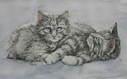 Animal Art Drawings Originals - Blue Eyes  by Cynthia House