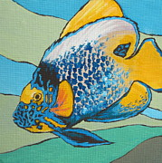 Angelfish Paintings - Blue Face Angelfish by Sandy Tracey