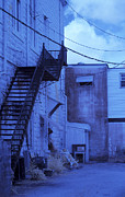 Fire Weed Prints - Blue Fire Escape USA near Infrared Print by Sally Rockefeller
