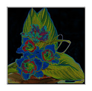 Canna Framed Prints - Blue Floral  Framed Print by Diana  Tyson