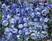 Entertaining Mixed Media Prints - Blue Flowers Print by Don  Wright