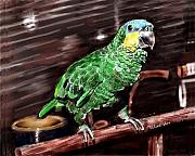 Amazon Parrot Posters - Blue-fronted Amazon Parrot Poster by Arline Wagner