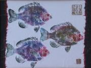 Gyotaku Prints - Blue Gill Print by Michele Caporaso