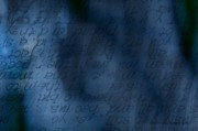 Blue Glimpse Print by Vicki Ferrari
