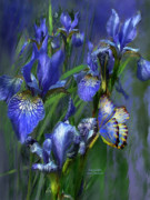 Print Of Irises Framed Prints - Blue Goddess Framed Print by Carol Cavalaris