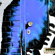 Ferry Ten Brink - Blue Graffiti Door