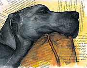 Custom Dog Portrait Paintings - Blue Great Dane on Pillow by Christas Designs