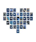 Boy Sees Hearts Digital Art - Blue Hearts by Boy Sees Hearts