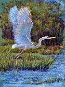 Landscapes Pastels Posters - Blue Heron in Flight Poster by Susan Jenkins
