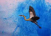 Great Blue Heron Paintings - Blue Heron by Lucy Deane