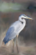 Fluttering Painting Framed Prints - Blue Heron Painting III Framed Print by Don  Wright