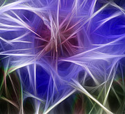 Luminous Digital Art - Blue Hibiscus Fractal Panel 2 by Peter Piatt
