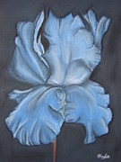 Bloom Pastels - Blue Iris by Almond Tree Art