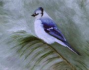 Marx Paintings - Blue Jay in Winter by Christine Marx