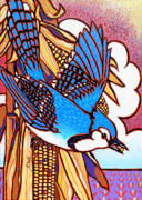 Nadi Spencer Metal Prints - Blue Jay Metal Print by Nadi Spencer