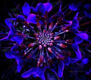 Kaleidoscope Photos - Blue Kaleidoscope by DigiArt Diaries by Vicky Browning