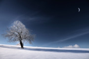 Philippe Sainte-Laudy - Blue Like Snow