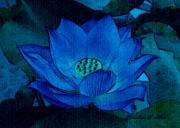 Lotus Pond Framed Prints - Blue Lotus Framed Print by Madeline  Allen - SmudgeArt