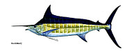 Kevin Brant Paintings - Blue Marlin by Kevin Brant
