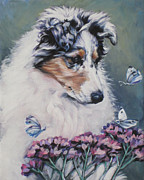 Collie Prints - Blue Merle Collie Pup Print by Lee Ann Shepard