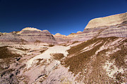Petrified Forest National Park Prints - Blue Mesa Landscape Print by Adam Jewell