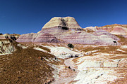 Petrified Forest Prints - Blue Mesa Tower Print by Adam Jewell