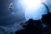 Perigee Moon Prints - Blue Moon - 7D12372 Print by Wingsdomain Art and Photography