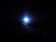Jessie Art - Blue Moon
