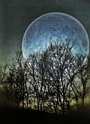 Visionary Art Photo Prints - Blue Moon Print by Marianna Mills