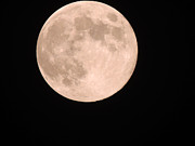 2012 Pyrography - Blue moon on 31-08-2012 by Ramesh Chand