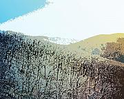 Mountain Mixed Media Prints - Blue Mountain Scrub Print by Susan  Epps Oliver