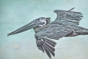 Waterfowl Mixed Media Framed Prints - Blue Pelican Framed Print by Deborah Benoit