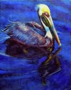 Pelican Drawings Metal Prints - Blue Pelican Metal Print by Kelly McNeil