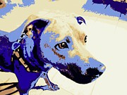 Societies Prints - Blue Pit Bull Abstract Print by Renee Trenholm