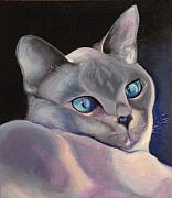 Oil Drawings - Blue Point Siamese by Susan A Becker