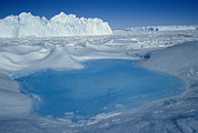 Spheniscidae Photos - Blue Pool on Iceberg Antarctica by Colin Monteath