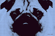Pug Digital Art Posters - Blue Pug Poster by Jayne Logan