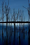 Landscapes Artwork Digital Art Posters - Blue Reservoir - Manasquan Reservoir Poster by Angie McKenzie