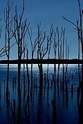 Blue Reservoir - Manasquan Reservoir Print by Angie Tirado