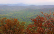 Mountain View Photos - Blue Ridge View 2 by Karol  Livote